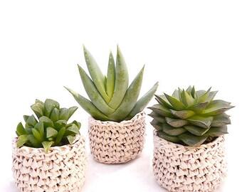Le Mini Cache-Pot en Papier : cadeaux aux invités, cadeau d'entreprise, décoration de mariage, mini plante grasse et cache-pot au crochet