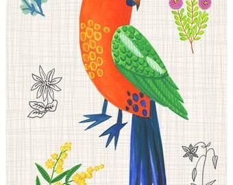 King parrot 8 x 10 print - Australian natives, flowers & parrots, kids print, children's art, Australiana