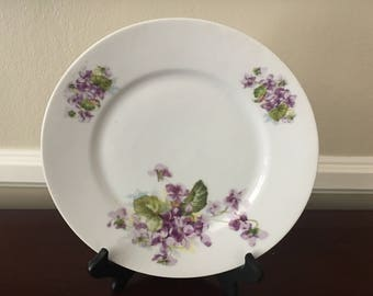 Antique KPM Germany collector plate with Violets