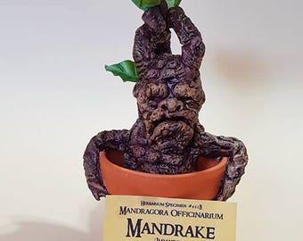 Mandrake inspired by Harry Potter