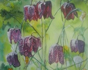 Fritillaries -watercolour painting