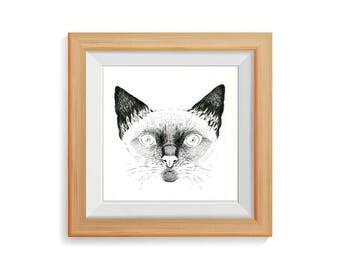 Cat portrait. Original Drawing.