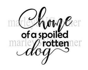 home of a spoiled rotten dog