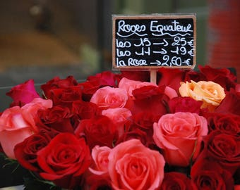 Roses On A Quiet Paris Street