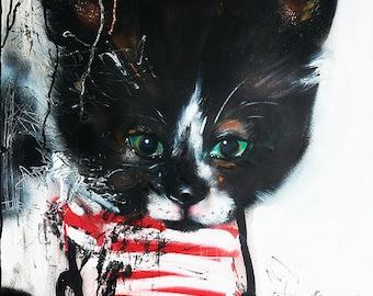 Paul Cat