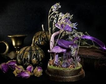 Mushrooms Miniature Decor - Fungi Terrarium - Mini Glass Dome Display - Marasmius Haematocephalus - 2.75 x 1.73 inches / 7 x 4,4 cm