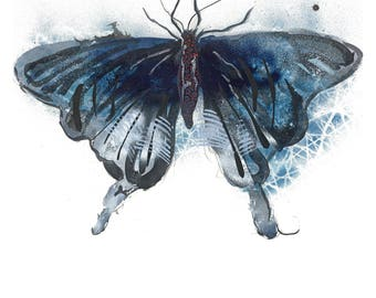 Black Butterfly Open Edition // home decor// Art Print// butterfly art // contemporary design  5x7, 8x10, 11x14, or 13x19
