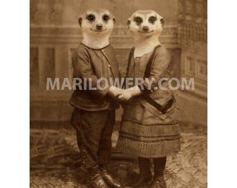 Meerkat Wall Art, 5x7 Print, 8x10 Print, Couple Holding Hands, Animals in Clothes, Nursery Decor
