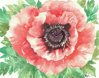 Watercolor Poppy Painting, coral poppy, original watercolor, coral flower, watercolor flower, floral painting,floral watercolor, peach poppy