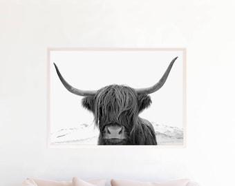 Highland vache noir et blanc Art Print, Highland Bull imprimable Wall Art, photographie à télécharger, affiche grand format, Animal, vache écossaise, hc4c1bw