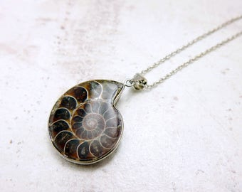Ammonite fossil necklace, ammonite jewelry, ocean jewelry, ammonite necklace, ammonite pendant, Fossil Jewelry