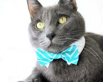 Light Blue Striped Bow Tie, Necktie, or Bow on a Shirt Style Collar for both Dogs & Cats