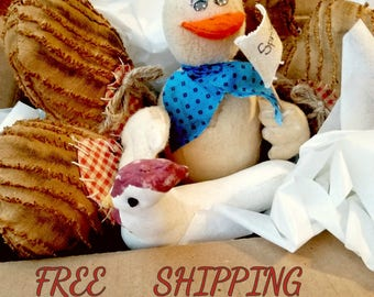 FREE Domestic SHIPPING all orders, Ships Free Coupon Code, Free Shipping Offer,  Shipping Coupon Savings