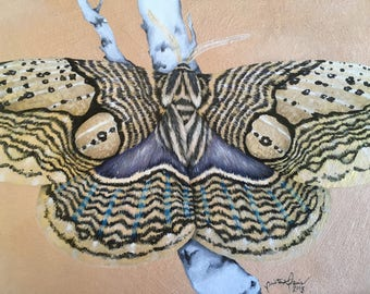 original painting - Moth on a Branch