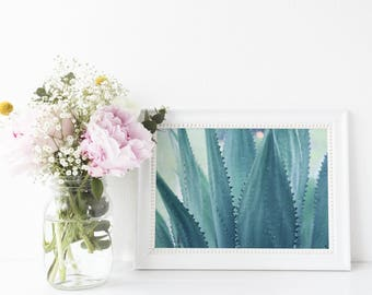 Agave succulent cactus - digital download instant art print - tropical chic leaf summer minimalist trendy