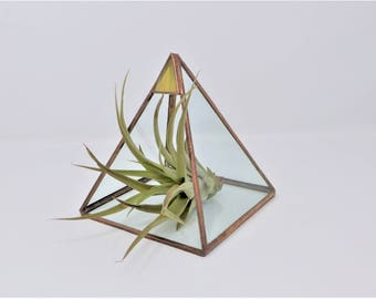 Stained Glass Egyptian Pyramid succulent terrarium/display