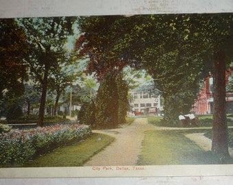 City Park View With Horse and Carriage, Dallas, Texas Antique Postcard