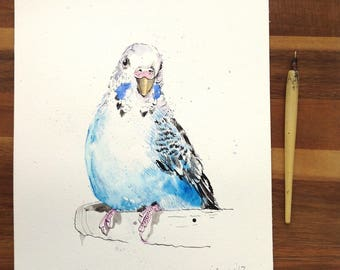 Blue and white Budgerigar - Original pen & ink drawing, watercolour painting - gift, watercolor, Parrots, budgie, parakeet, budgies