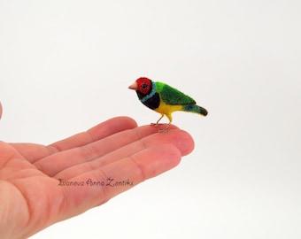Felted Gouldian finch, Gouldian finch Bird miniature birds Gouldian finch miniature bird miniature birds for dollhouse, tiny Gouldian finch