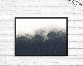 Forest Print, Fog print, Fog and Forest Photography, Nature Art, Foggy forest, Nature print, Foggy Mountain Photo, Misty forest wall print