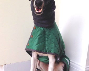 SAMPLE SALE! Quilted Showerproof Coat for Whippet/Sighthound  *Bottle green+Grey