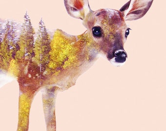 Fawn Print - Fawn art, Double exposure, Digital Art, Nature, Fawn poster, Landscape, Wall art