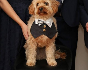 Dog Tuxedo with bow tie and buttons