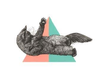 Cat print, playful kitten illustration, animal art, drawing,