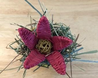 Bailey's Bouquet - MINI