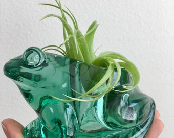 Emerald green frog plant candle holder /Green frog  air plant holder / green glass tea light plant holder