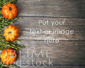 Fall Background /  Fall Styled / Stock Photo / Wood Background / Pumpkins / Mums / Pumpkins on wood / Social Media Stock / StockStyle-886