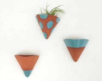 Wall Hanging Planter for Air Plants