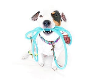 Dog rope leash DWAM Dog with a mission