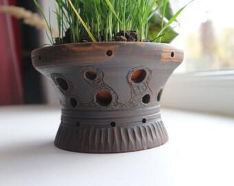 Cactus Pot, Ceramic Cactus Planter, Succulent Planter, Ceramic Plant Pot, Succulent Pot, Flower pot, Ceramic plant pot, Air plant pot