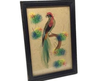 Framed Feather and Watercolor Art Work 4 x 6 1950's