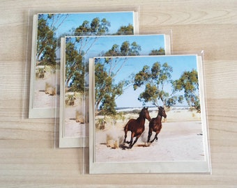 Greeting Card country Horses Running cards photo 5 x5 inch in size, blank inside Pack of 3
