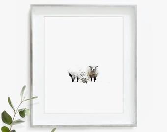 Baby Sheep Wall Art, Lamb Print, Nursery Animal, Digital Download, Farmhouse Wall Decor, Watercolor Print, Printable Lamb, Nursery Wall Art