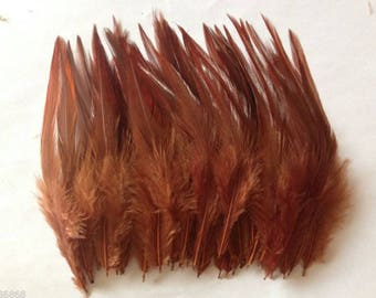 PROMO * set of 100 natural feathers