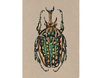 "Beetle original painting // Postcard sized - A6, 4.1"" x 5.8"""