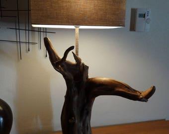 Beautiful lamp Driftwood roots Oboisdormant strain