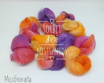 Spinning fiber - Polwarth/silk combed top - 25gr - Companion nests - Fiber nests - Fiber nests with coordonated colors - Sorbet d'été