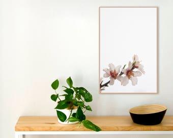 Scandinavian print | Scandinavian poster | Nordic print | Minimal printable | Nordic wall art | Almond tree flowers print | Botanical print