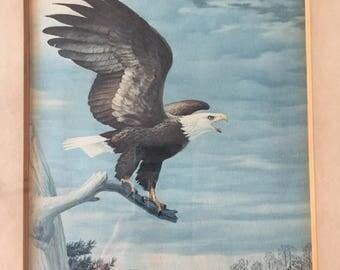 Vintage Bald Eagle Bob Hines Natural National wildlife Artist signed