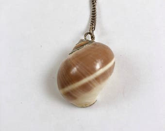"Sea Shell Necklace, Moonsnail Sea Shell, Vintage 1970s Necklace, Seashell Necklace, Silver, Brown, Cream, 22"" Chain"