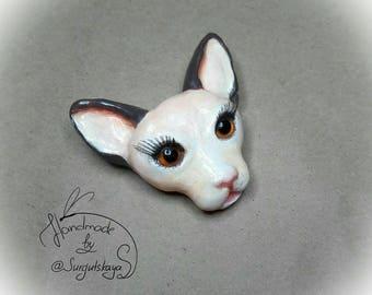 Brooсh cat