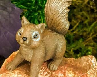Miniature Brown Squirrel