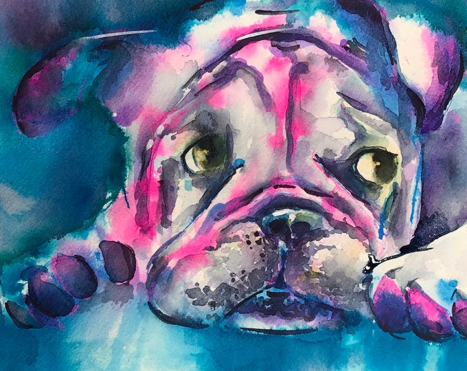 The Power of the English Bulldog