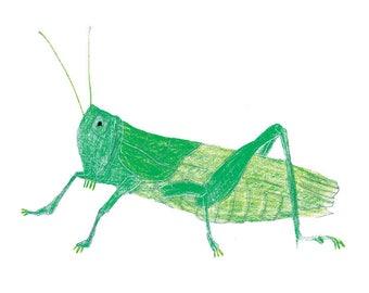 Grasshopper print, Grasshopper printable, Insect illustration, Grasshopper drawing, Wildlife art printable