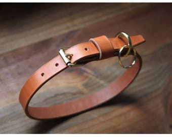 "3/4"" wide Leather dog collar with brass buckle (free name stamping!)"