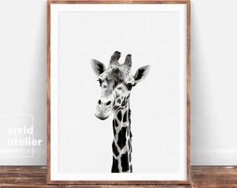 Giraffe Print, Nursery Giraffe, Baby Animal Wall Art, Black and White Animal Print Decor, Printable Black and White Safari Nursery Art Print